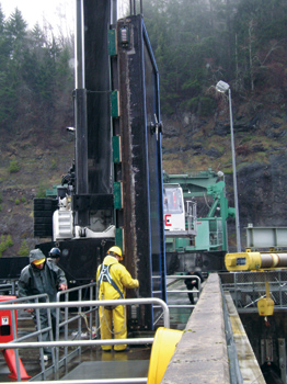 Personnel hired by NAES Corporation perform a variety of functions at hydroelectric plants, including gate and penstock repairs, turbine repairs and installations, electrical work and general maintenance.