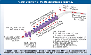 Overview of the Decompression Raceway