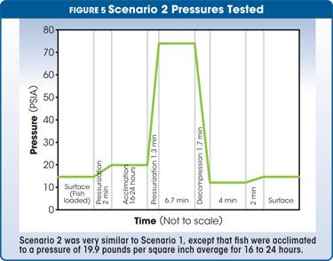 scenario 2 pressues tested