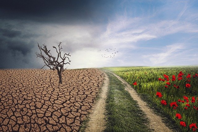 Climate Change Weather