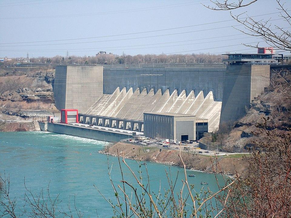 Niagara plant