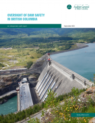 Dam safety report