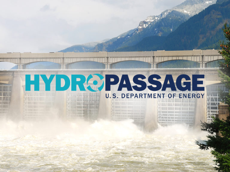 Hydro Review: HydroPASSAGE: Advancing Hydropower for Fish and Industry